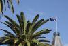 Palm and Aussie flag at Freo, Fremantle WA