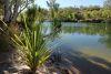 Manning pool, Mount Barnett, Gibb River Road, WA