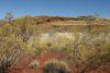 Landscape  - Outback